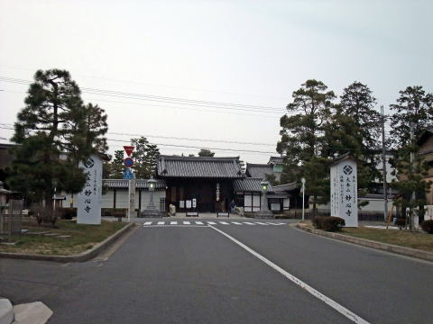 京都旅行より(妙心寺の魅力)